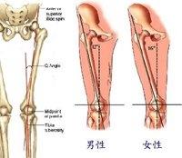 女性股四頭肌生理夾角與膝關節不明原因疼痛大相關