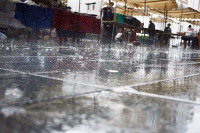 豪雨後爆發多種傳染病!3步驟遠離疾病威脅