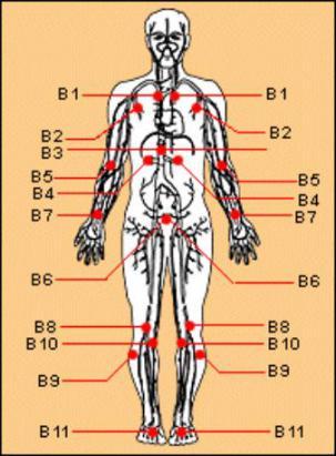 身體穴道治療說明