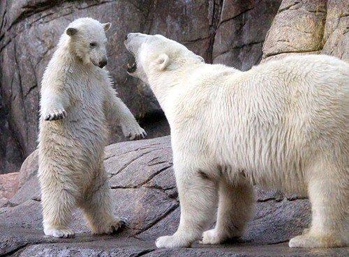 〔擁抱〕是最好的語言…真正的熊抱…
