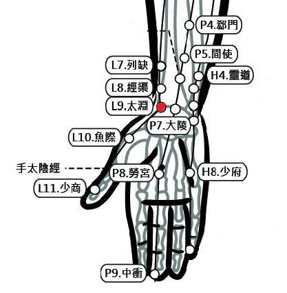 穴位保健─太淵穴(通喉消腫不咳嗽)