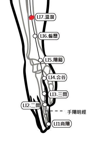 穴位保健─溫溜穴(口腔發炎難吞嚥)