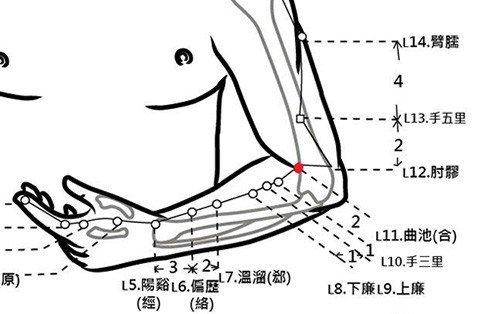 穴位保健─曲池穴(排除宿便好肌膚)