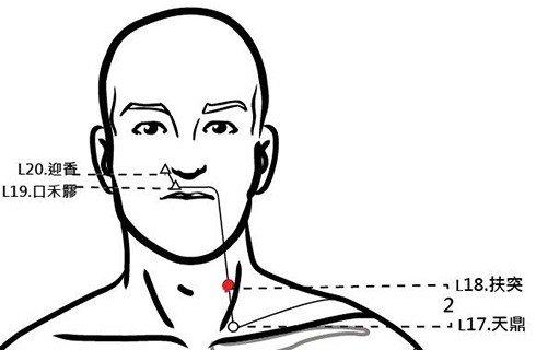 穴位保健─扶突穴(咳嗽咽喉腫)