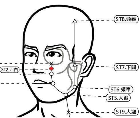穴位保健─四白穴(消除黑眼圈增強視力)