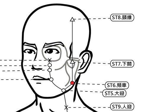 穴位保健─頰車穴(小臉按摩,除牙痛保健康)