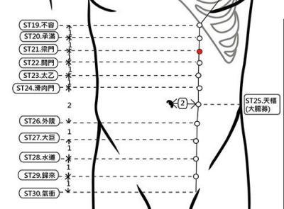 穴位保健─梁門穴(改善交際應酬族的副產品-胃炎)