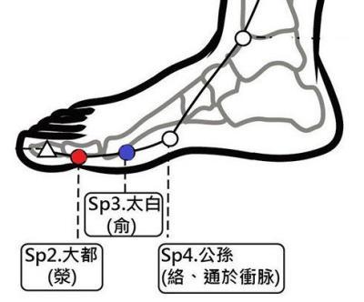 穴位保健─大都穴(緩解壓力與增強鈣吸收)