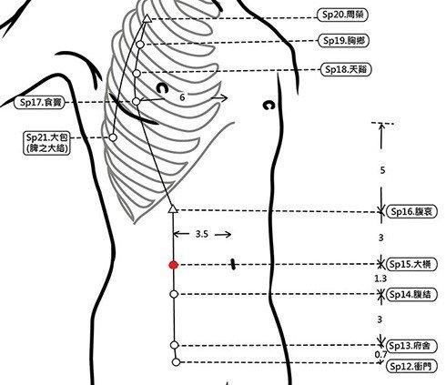 穴位保健─大橫穴(排宿便整腸道)