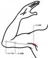 穴位保健─極泉穴(強化心臟功能緩肩痛)