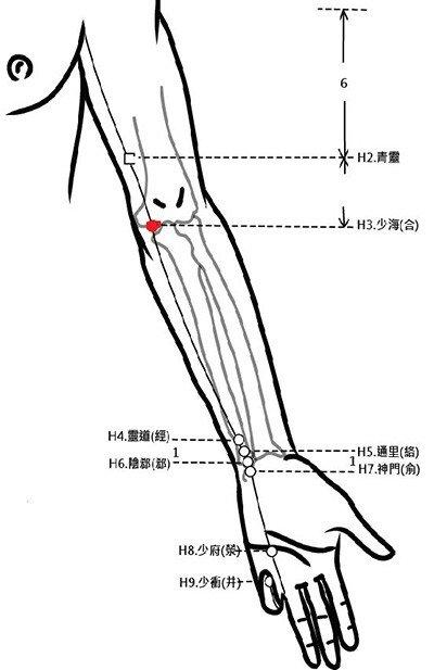 穴位保健─少海穴(肘疼胃痛調心腎)