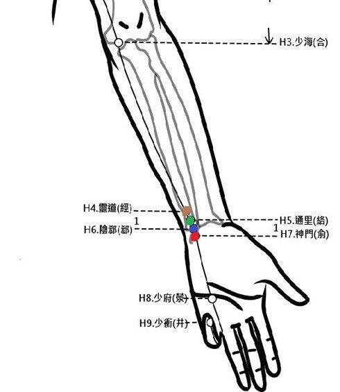 穴位保健─神門穴(安心助眠調心律)