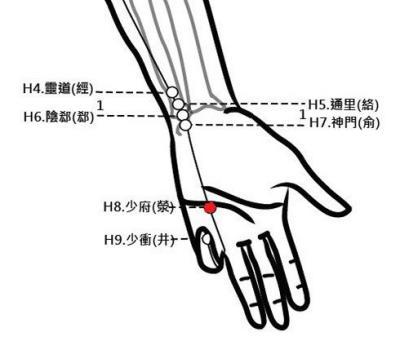 穴位保健─少府穴(去心火毒解溼熱)