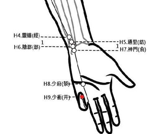 穴位保健─少衝穴(胸悶氣喘脇肋疼)