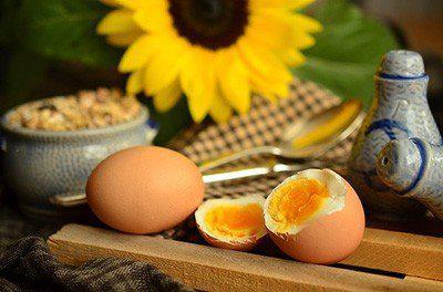減肥就該補充蛋白質,這樣吃才對!