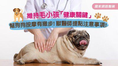維持毛小孩健康關鍵 幫狗狗按摩有撇步!獸醫師提點注意事項
