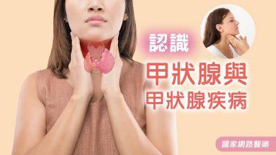 認識甲狀腺與甲狀腺疾病