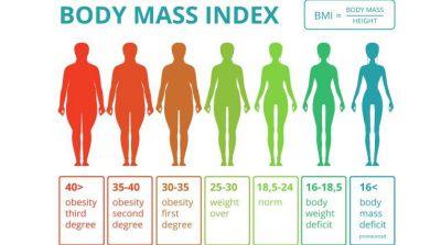 肥胖促使大腦皮質層變薄 恐導致提早衰老
