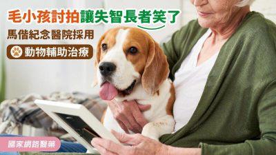 毛小孩討拍讓失智長者笑了 馬偕紀念醫院採用動物輔助治療