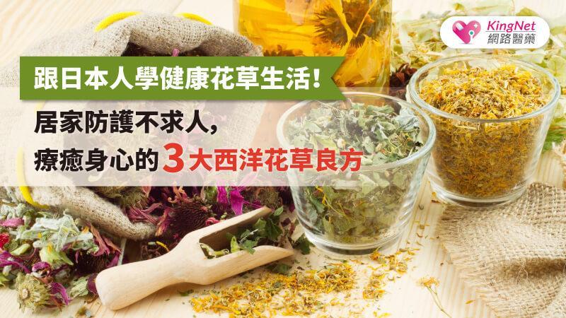 居家防護不求人,跟日本人學健康花草生活!療癒身心的3大西洋花草良方