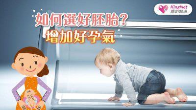 如何選好胚?增加好孕氣